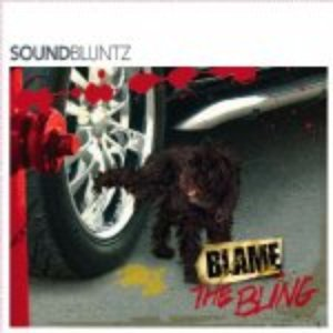 Image for 'Blame The Bling'
