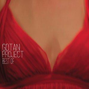 Immagine per 'Best of Gotan Project'