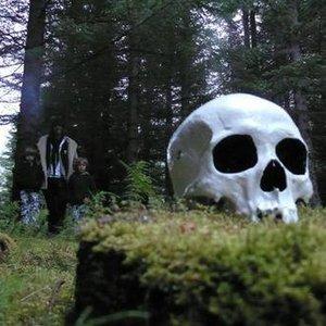 Bild för 'Dead Skeletons'