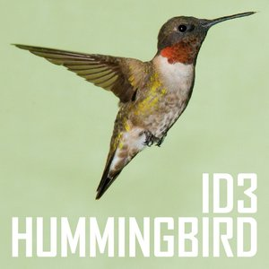 Image for 'Hummingbird'