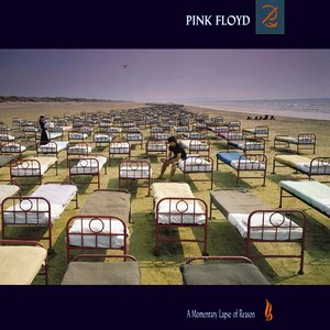 Image for 'A Momentary Lapse of Reason'