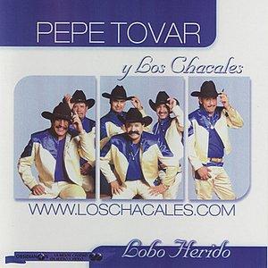 Image for 'Lobo Herido'