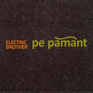 Image for 'Pe Pamant'