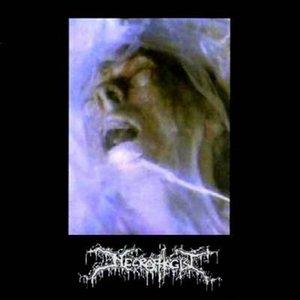 Bild für 'Necrophagist'