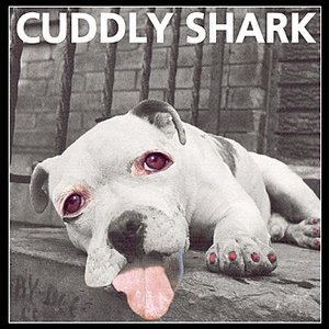 Image for 'Cuddly Shark'