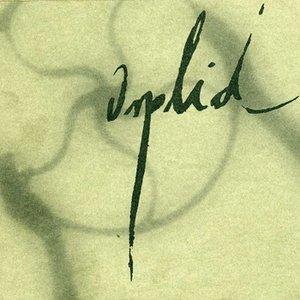 Image for 'Orplid'