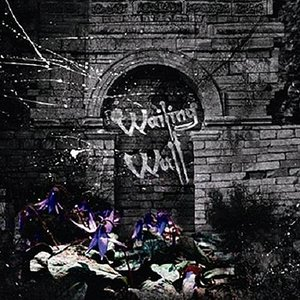 Image for 'Wailing Wall'