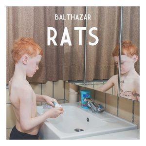 Image for 'Rats'
