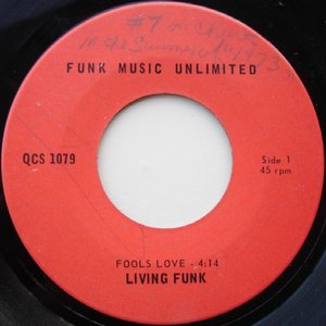 Image for 'Living Funk'