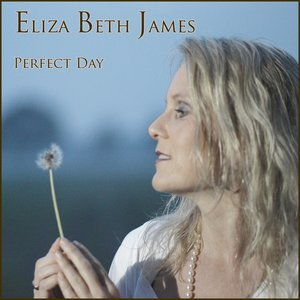 Bild för 'Perfect day - Radio Edit - single'