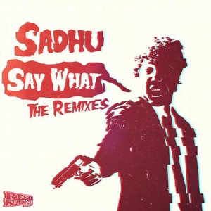 Image for 'Say What The Remixes'