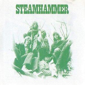 Image for 'Steamhammer'