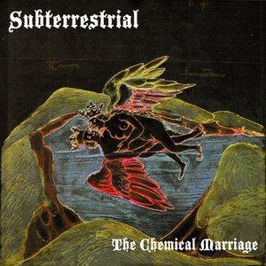 Bild för 'The Chemical Marriage'