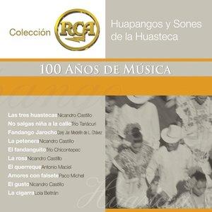 Image for 'RCA 100 Anos De Musica - Segunda Parte (Huapangos Y Sones De La Huasteca)'