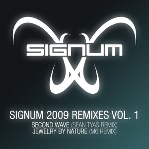 Image for 'Signum 2009 Remixes Vol. 1'