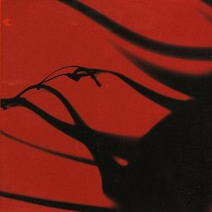 Image for 'Giubek'