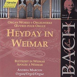 Image for 'Johann Sebastian Bach: Heyday in Weimar'