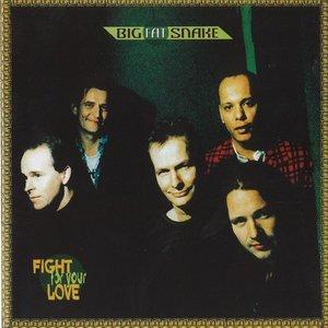 Bild für 'Fight for Your Love'