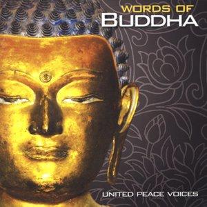 Imagen de 'United Peace Voices'