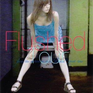 Imagem de 'Flushed Tour'