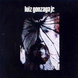 Image for 'Luiz Gonzaga Jr'