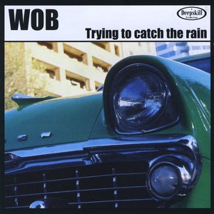 Image for 'Trying to Catch the Rain'
