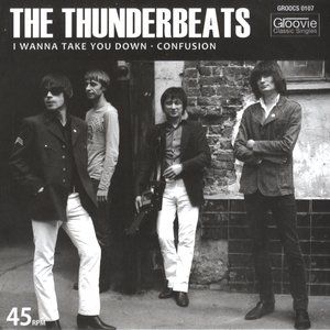 Image for 'The Thunderbeats'