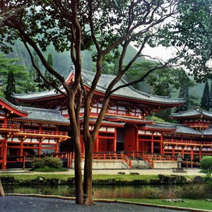 Image for 'Buddhist Temples'