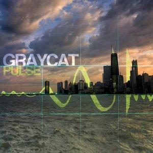 Image for 'GrayCat'