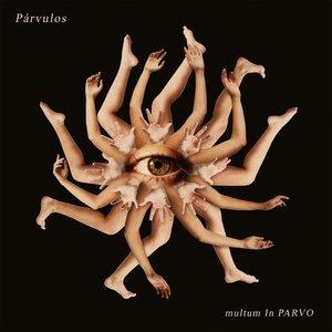 Image for 'Multum In Parvo'