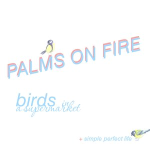Image for 'birds in a supermarket (single)'
