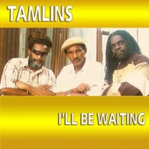 Image for 'I'll Be Waiting'