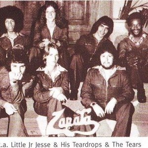 Image pour 'Little Jr. Jesse & His Teardrops & the Tears'