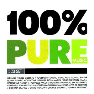 Image for '100% Pure Music'