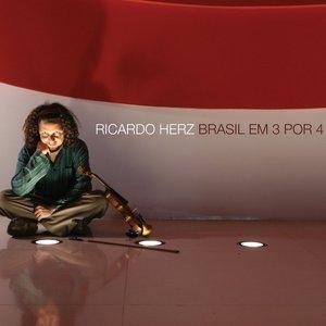 Bild för 'Brasil em 3 por 4'
