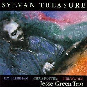 Image for 'Sylvan Treasure'
