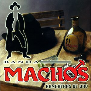 Image for 'Rancheras de oro'