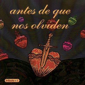 Image for 'Antes de Que Nos Olviden'