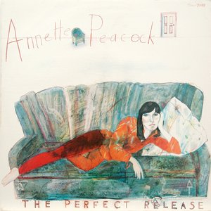 Image for 'The Perfect Release'