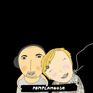 Image for 'Pomplamoose VideoSongs'