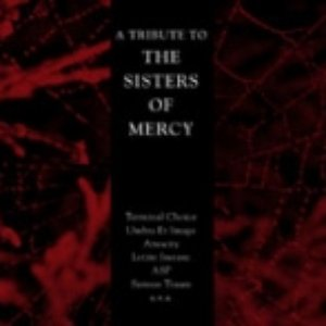 Image for 'A Tribute to the Sisters of Mercy'
