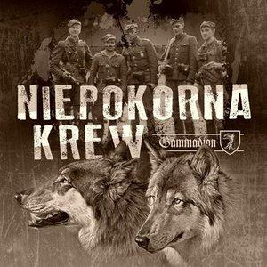 Image for 'Niepokorna krew'