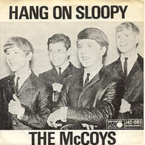 Image for 'Hang On Sloopy'