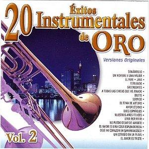 Image for '20 Éxitos Instrumentales De Oro Vol. 2'