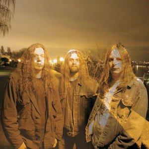 Image pour 'Golden Pig Electric Blues Band'