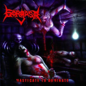 Image for 'Lacerated Masturbation'