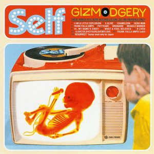 Image for 'Gizmodgery'
