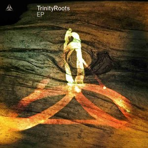 Image for 'Trinity Roots'