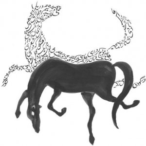 Image for 'Under A Capricorn Sky'