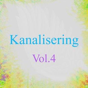 Imagen de 'Kanalisering, Vol. 4 (Kanaliseringer Fra Energi)'